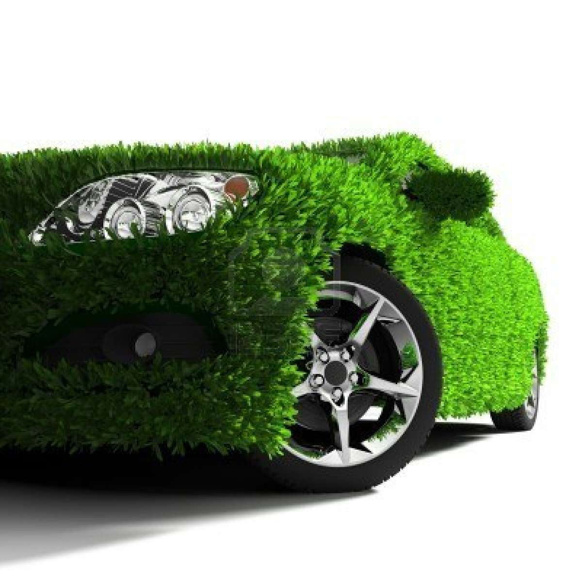 car covered with green